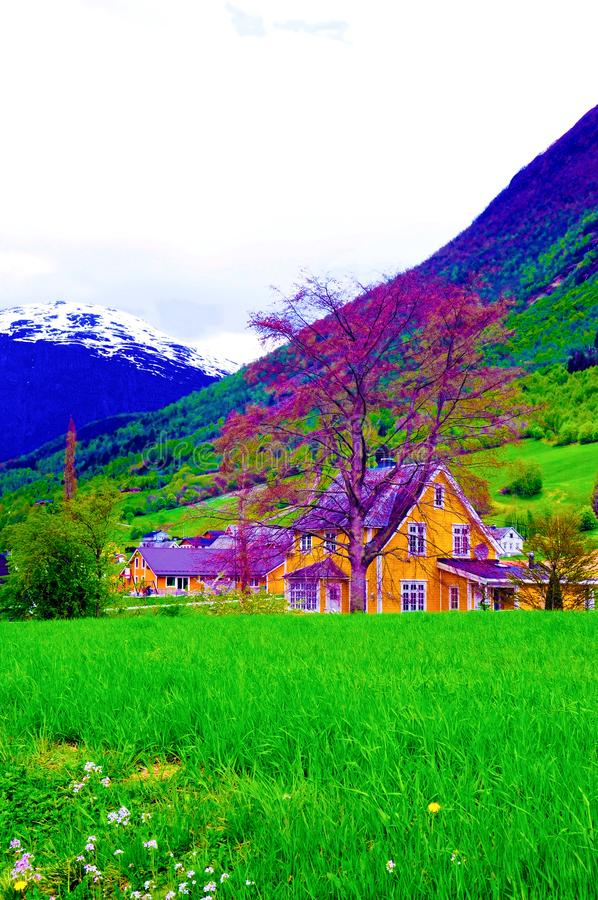 Vallée de montagne de la Norvège et beau cottage jaune, maison de campagne images stock