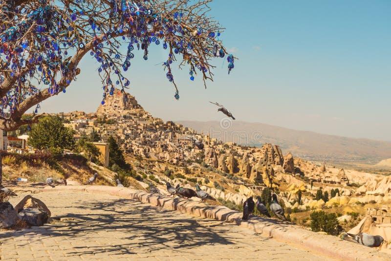 Vallée de pigeon dans Cappadocia et arbre avec des amulettes de nazar image stock
