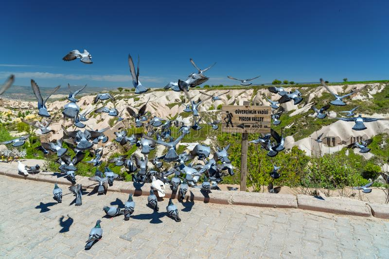 Vallée de pigeon, parc national de Goreme, Cappadocia Turquie photographie stock