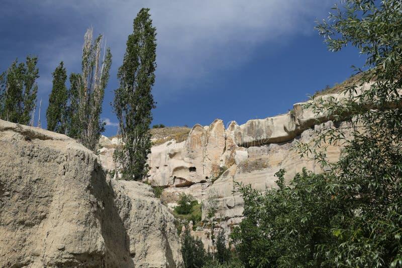 Vallée de pigeons dans Cappadocia image libre de droits