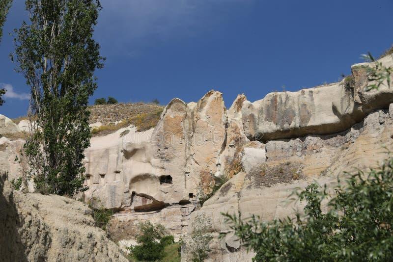 Vallée de pigeons dans Cappadocia photo libre de droits
