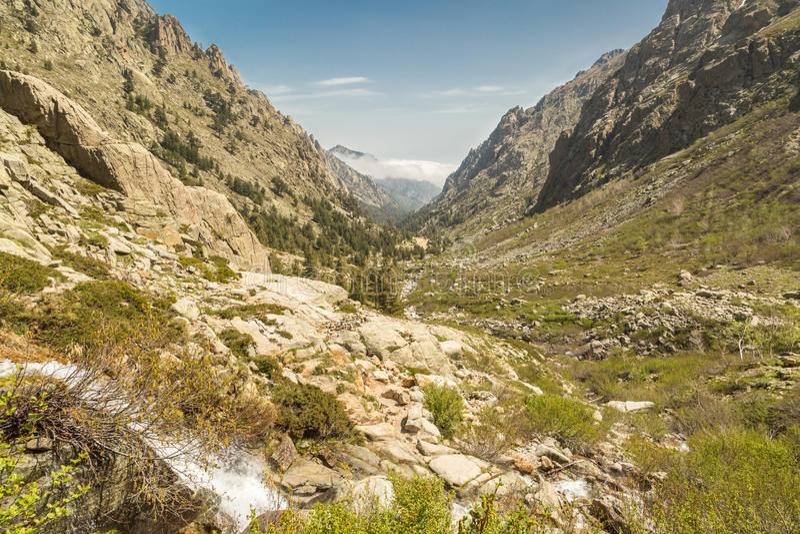 Vallée de Restonica en Corse images stock