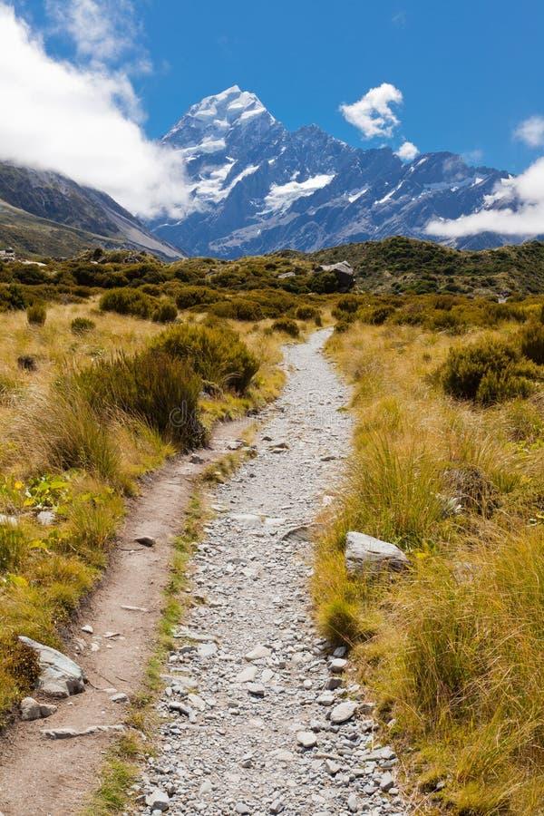 Vallée de verre avec les Alpes méridionaux NZ de cuisinier d'Aoraki Mt photographie stock