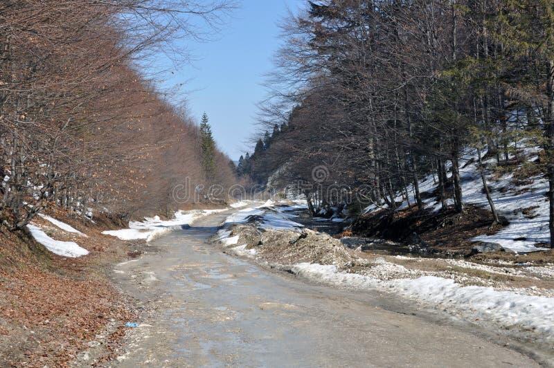 Vallée de voie de montagne image stock