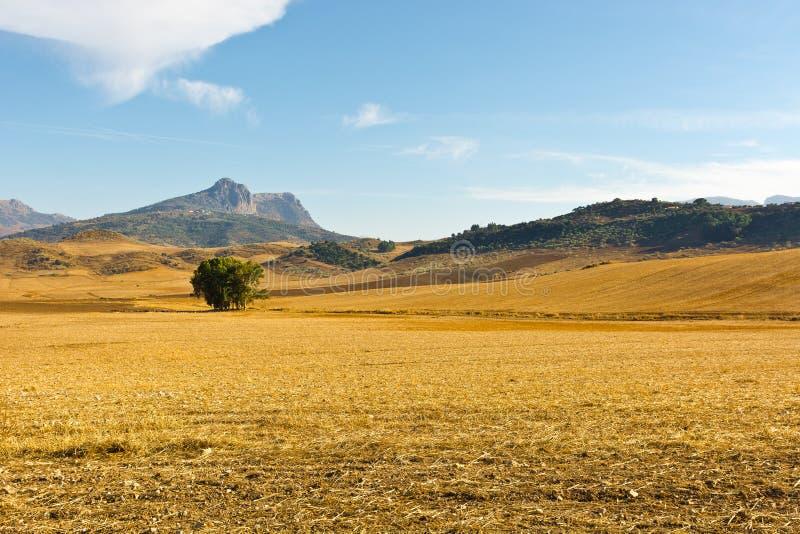 Vallée en Espagne images libres de droits
