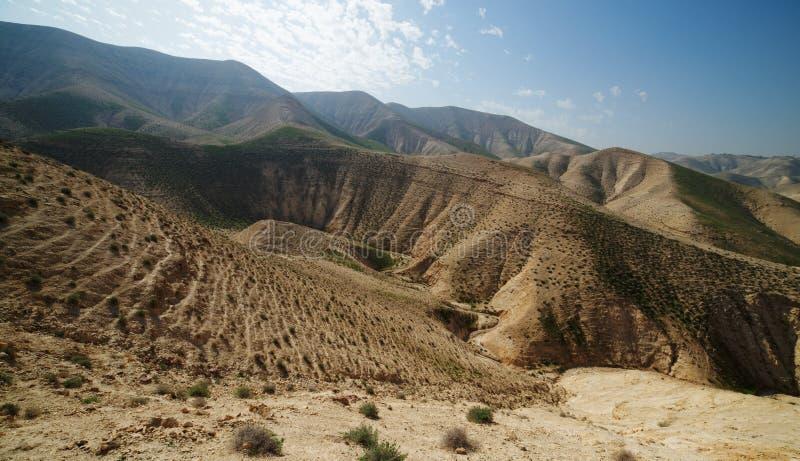 Vallée entre les côtes dans le désert au printemps photographie stock libre de droits