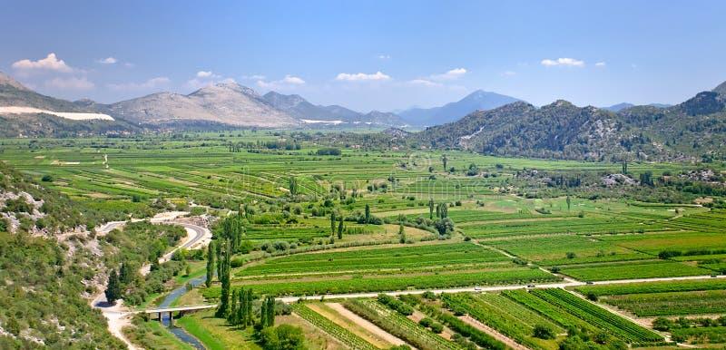 Vallée fertile en montagnes de Monténégro images stock