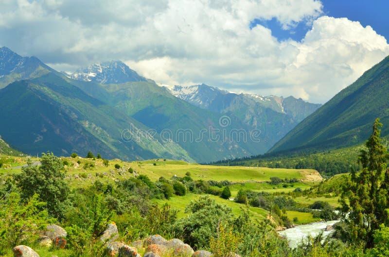 Vallée Kuban photo stock