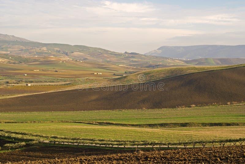 Vallée sicilienne photographie stock libre de droits