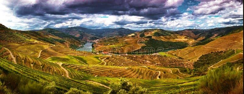 Vallée splendide de Douro photo stock