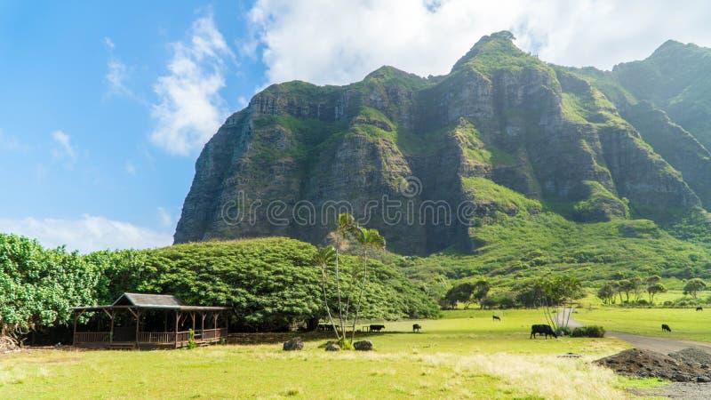 Vallée tropicale de Kahana photos stock