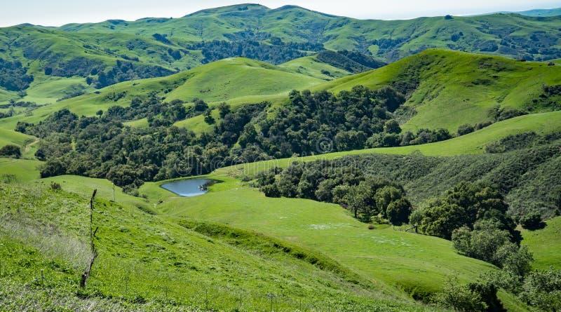 Vallée verte, Cambria, la Californie photos libres de droits