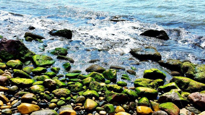 Vallarta. Part of the beach in Puerto Vallarta, Jalisco, Mexico royalty free stock images
