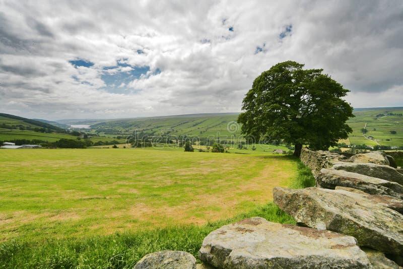 Vallate del Yorkshire immagine stock