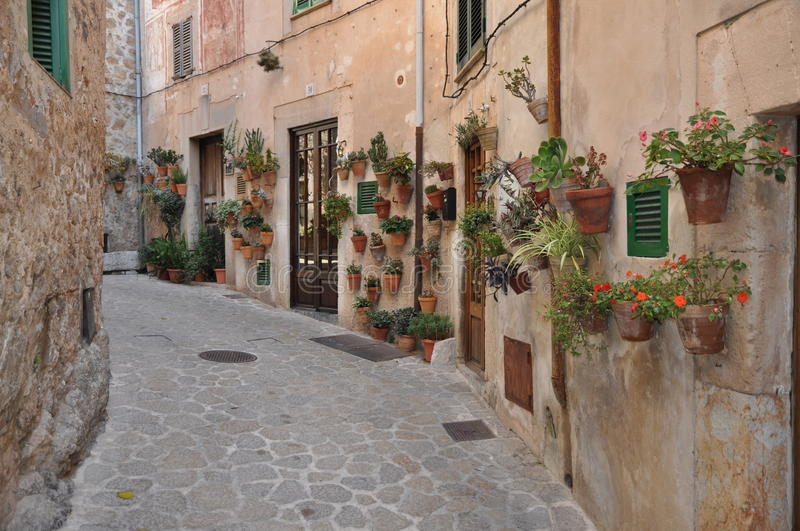 Download Valldemossa, Majorca stock image. Image of floral, nearest - 26448977