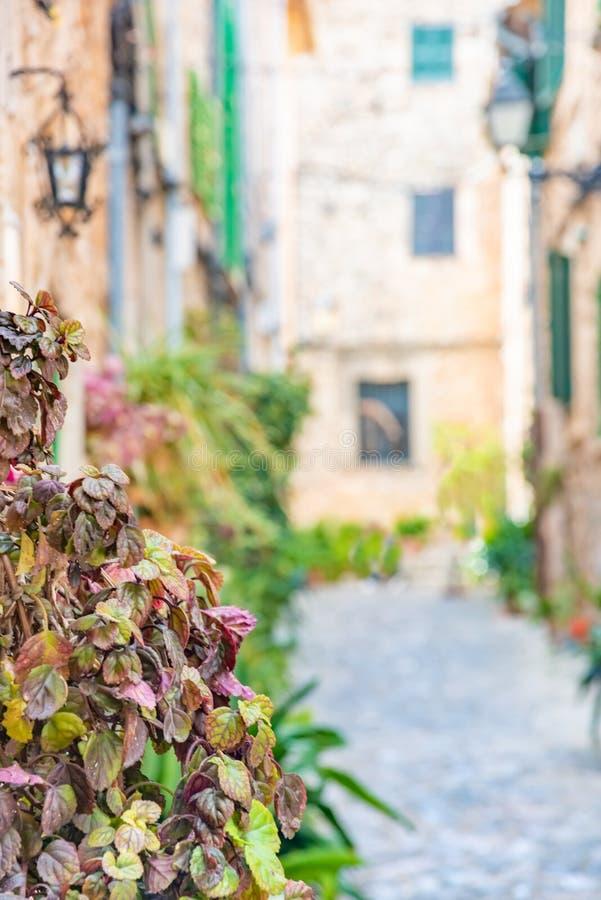 Valldemossa, vila mediterrânea velha famosa da ilha Mallorca de Majorca, Espanha fotos de stock