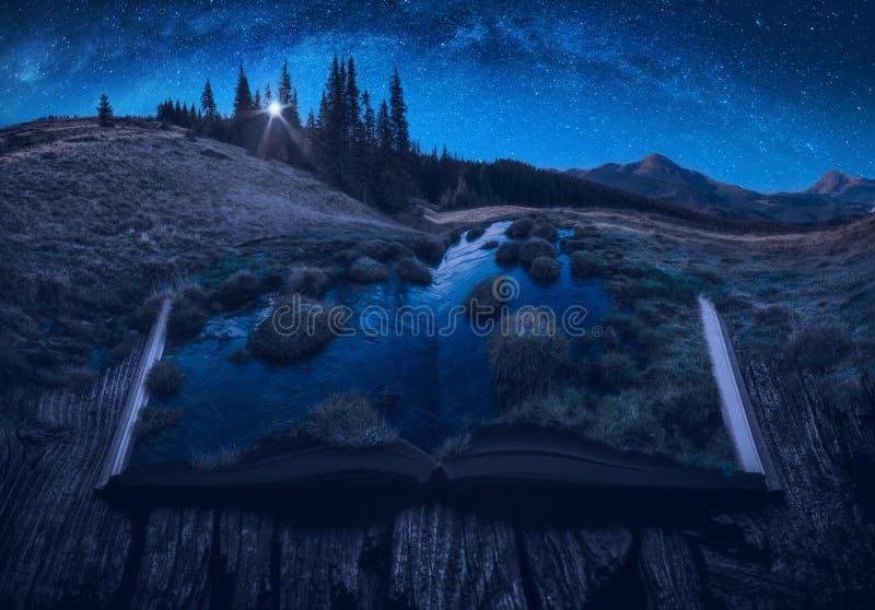 Valle alpina della montagna ad una luce di luna immagini stock