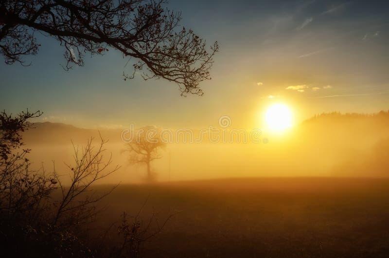 Valle con la niebla en la puesta del sol imagenes de archivo