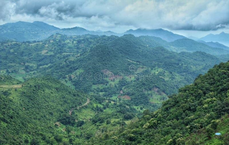 Valle de Araku y x28; India& x29; imagenes de archivo