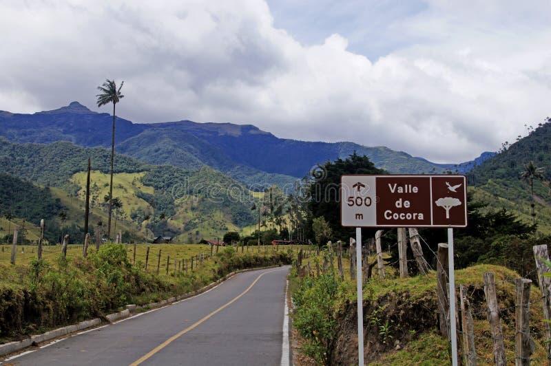 Valle de Cocora cerca de Salento, Colombia fotografía de archivo libre de regalías