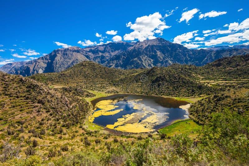 Valle de Colca, Perú foto de archivo libre de regalías