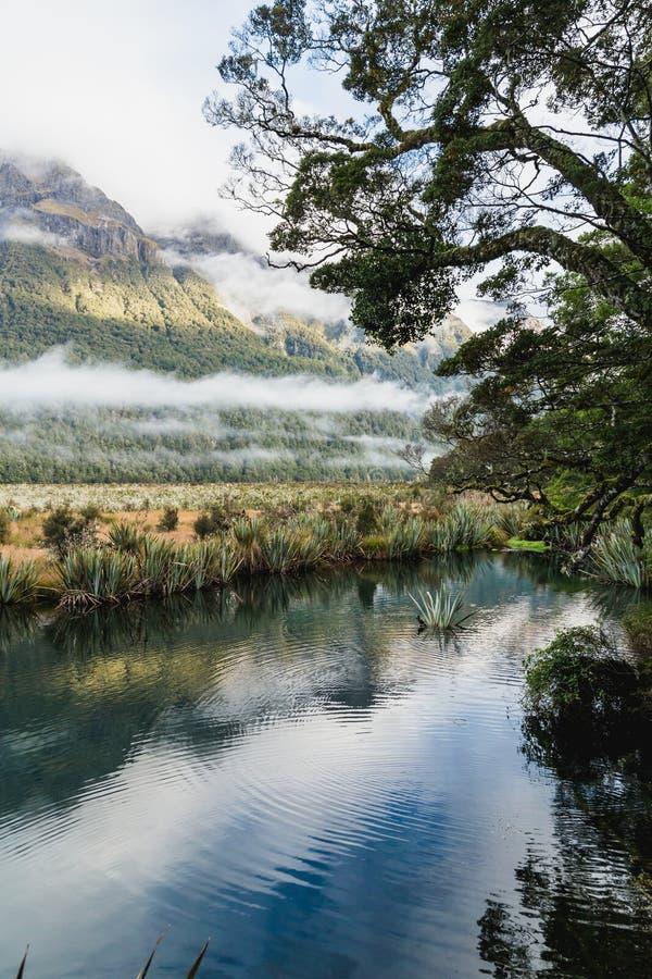 Valle de Eglinton, lagos del espejo a lo largo del camino del camino del milford en Nueva Zelanda imagen de archivo libre de regalías