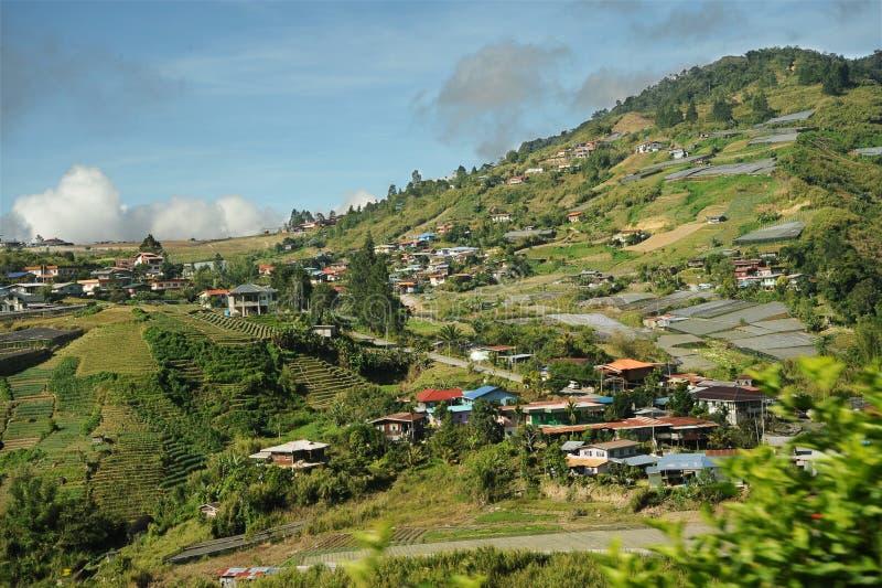 Valle de la agricultura cerca de la montaña de Kinabalu fotos de archivo