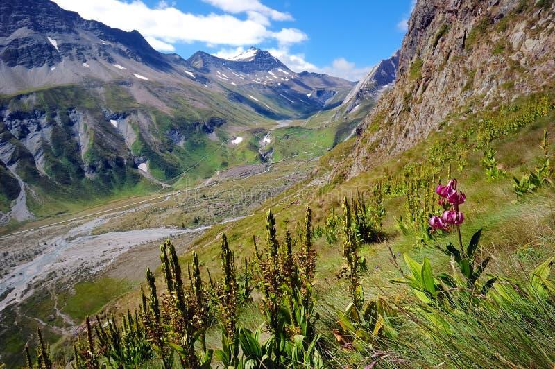 Valle de la montaña fotos de archivo libres de regalías