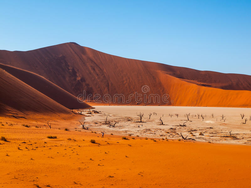 Valle de la muerte en namibiano Sossusvlei foto de archivo