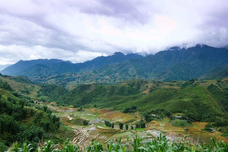 Valle de los campos de la terraza del arroz imagen de archivo