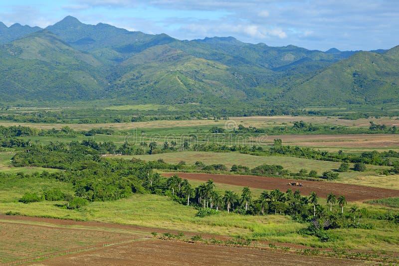 Valle de Los Ingenios, Kuba lizenzfreie stockbilder
