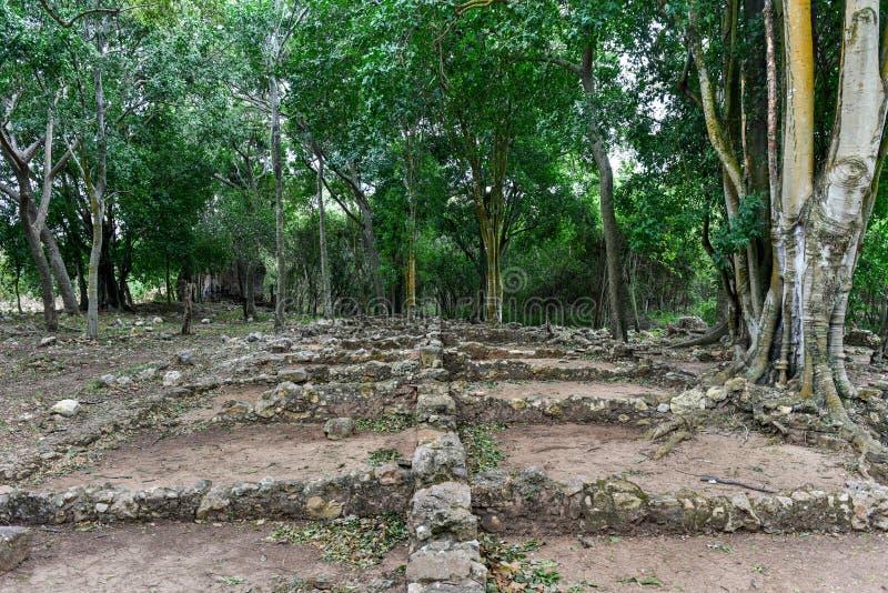 Valle de los Ingenios, Trinidad, Kuba royaltyfria bilder