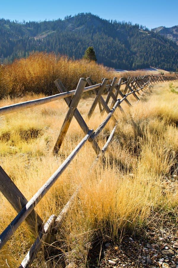 Valle de madera de la montaña de California de la cerca fotos de archivo