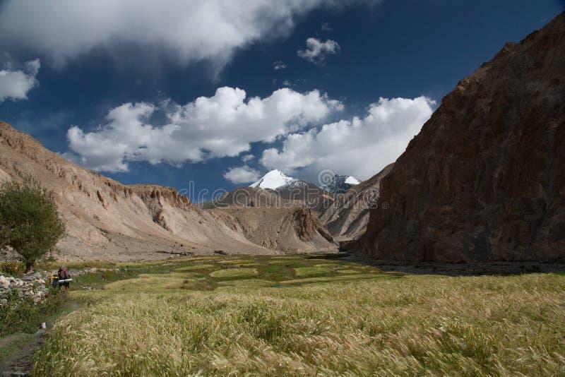 Valle de Markha imagen de archivo libre de regalías