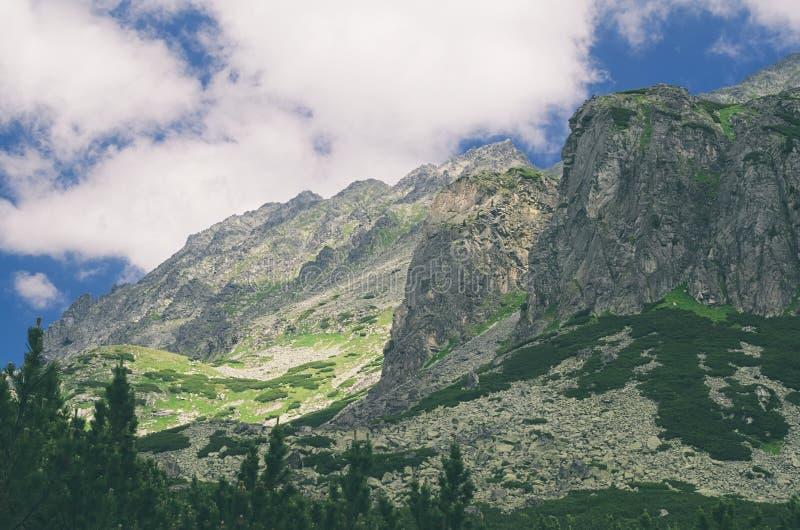 Valle de Mlynicka en alto Tatras fotos de archivo
