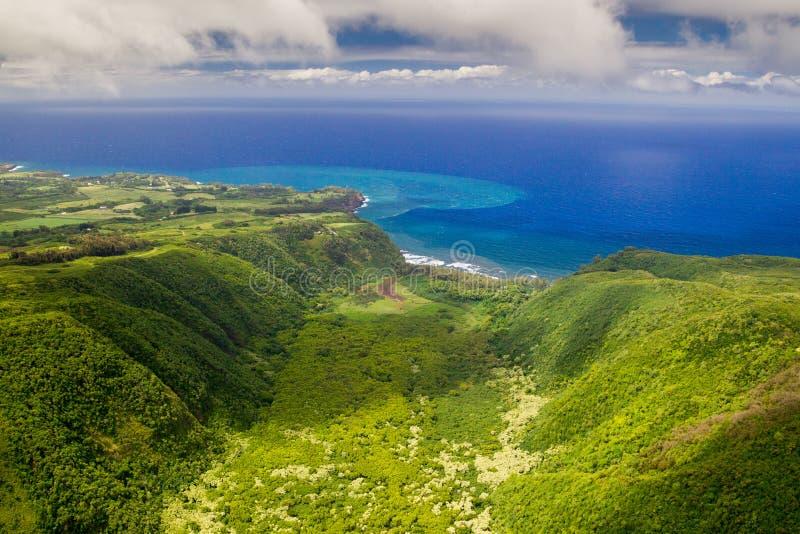 Valle de Polulu, isla grande, Hawaii fotos de archivo