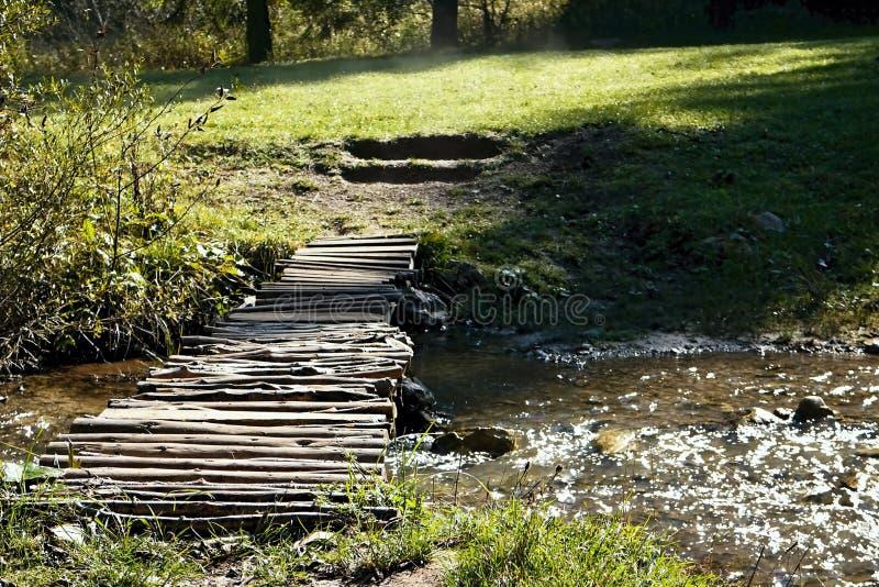 Valle de Ruzomberok - de Cutkovska - paseo a través del valle con un pequeño puente sobre un río de la montaña en el valle de Cut fotografía de archivo