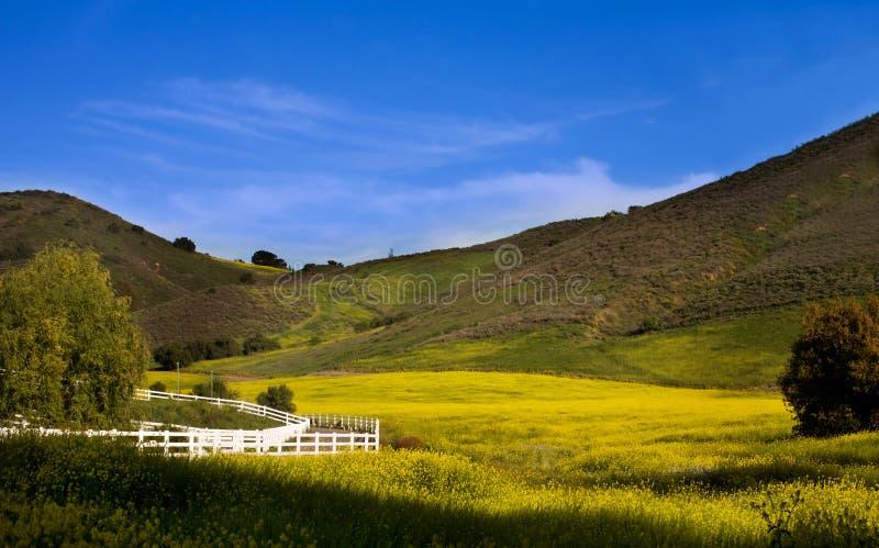 Valle de Santa Rosa imágenes de archivo libres de regalías