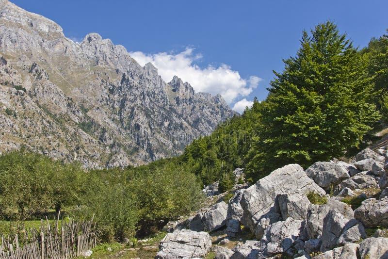 Valle de Valbona en Albania imagenes de archivo