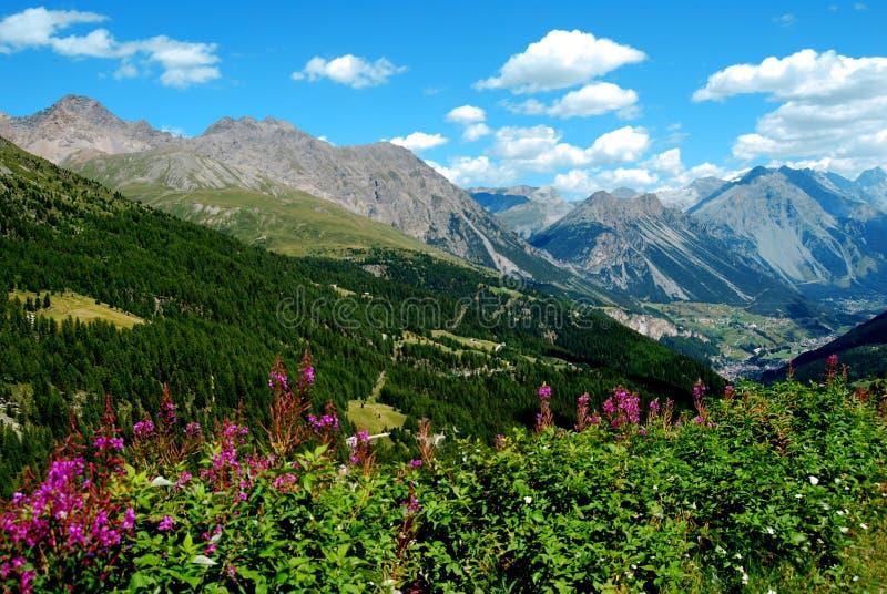 Valle de Valfurva imagen de archivo libre de regalías
