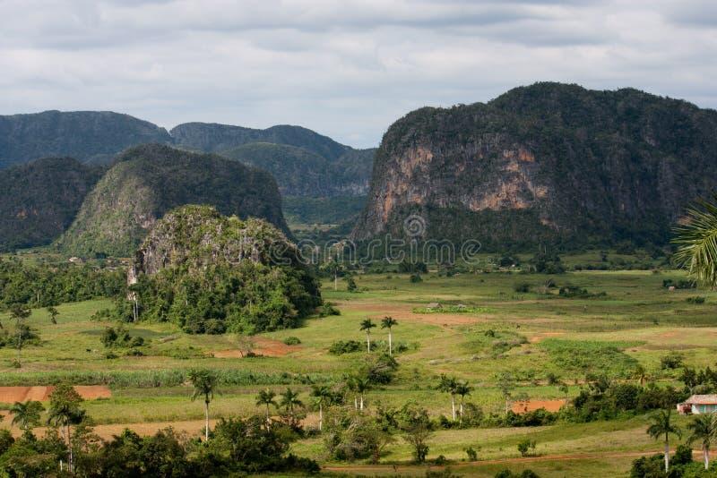 Valle de Vinales stock images
