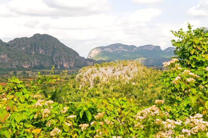 Valle de Vinales fotos de archivo