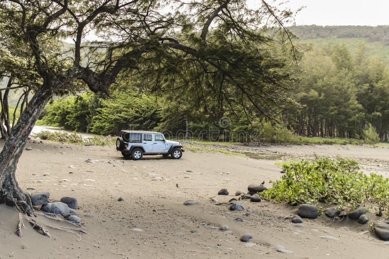Valle de Waipio con el jeep, isla grande, Hawaii fotografía de archivo libre de regalías
