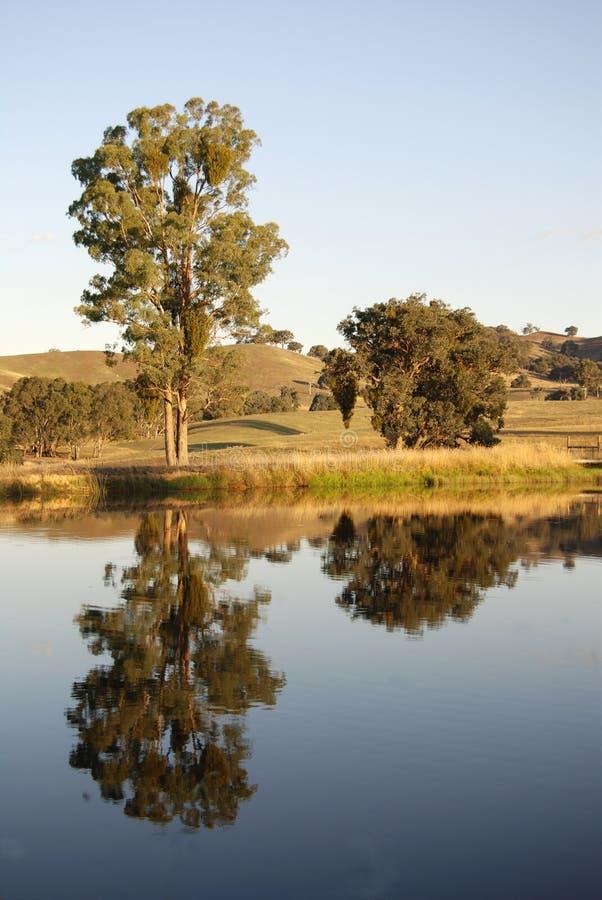 Valle de Yarra foto de archivo libre de regalías