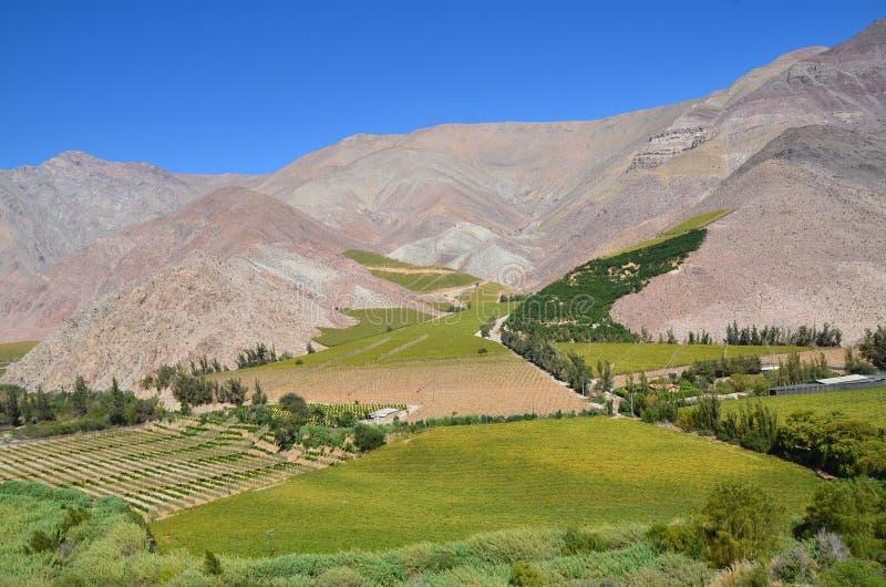 Valle del Elqui royalty-vrije stock afbeeldingen