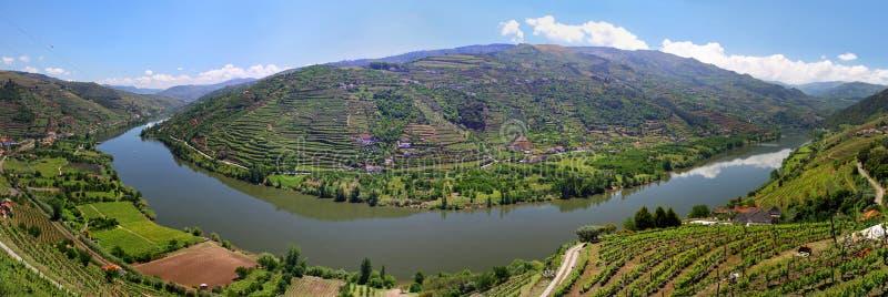 Valle del fiume il Duero con le vigne vicino a Mesao Frio Portogallo fotografia stock libera da diritti