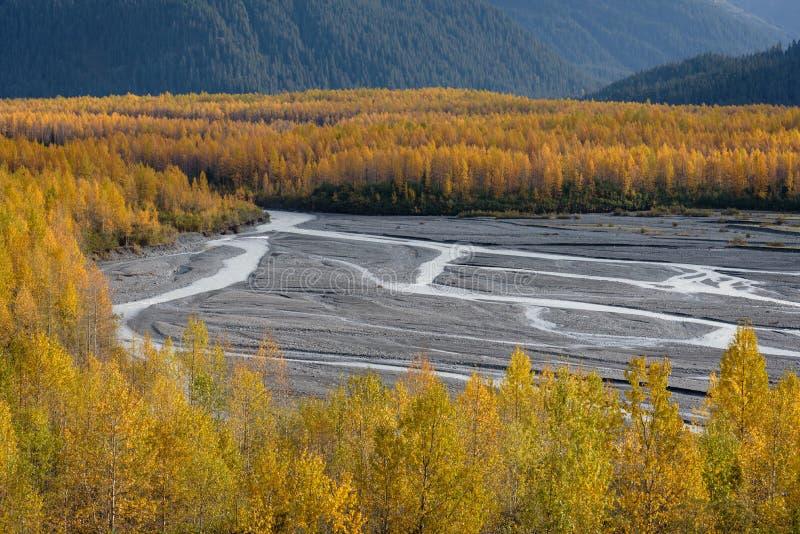 Valle del fiume Resurrection al Ghiacciaio di uscita, Kenai Fjords National Park, Seward, Alaska, Stati Uniti fotografia stock libera da diritti