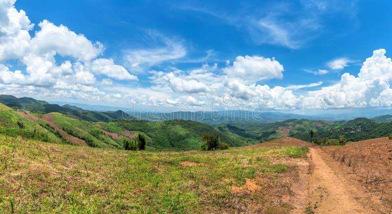 Valle della foresta della montagna e cielo blu della nuvola Doi chang in Chiang Rai, Tailandia fotografie stock