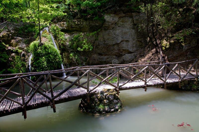 Valle delle farfalle, Rodi, Grecia fotografia stock libera da diritti