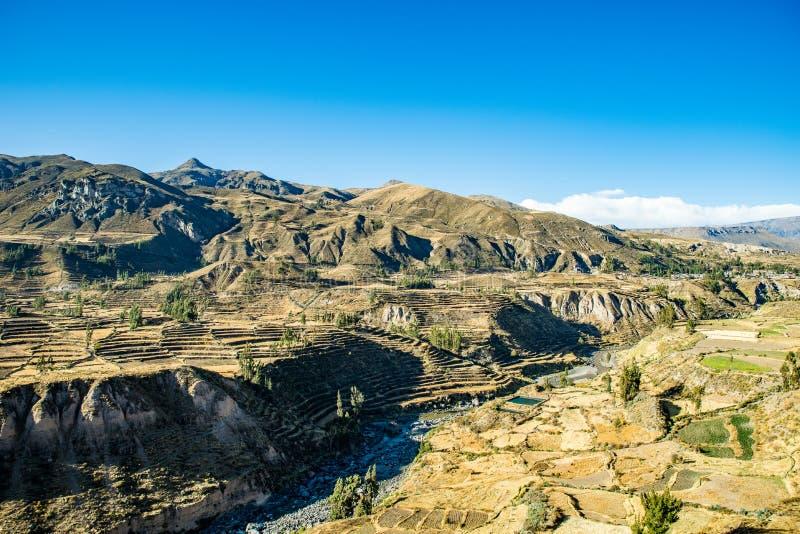 Valle di Colca, Perù fotografie stock libere da diritti